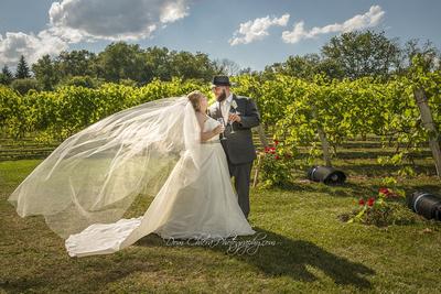Wedding at Gervasi Vineyard